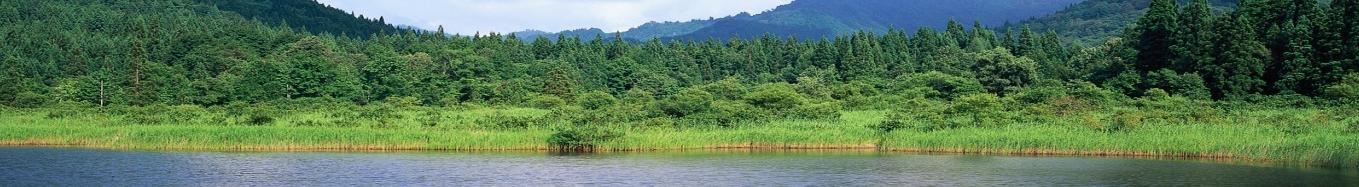 ambiente.png