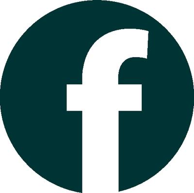 facebook-verdone.png